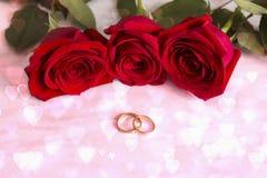 красный цвет звенит розы wedding венчание романтичного символа приглашения сердец элегантности предпосылки теплое Розовая сторона Стоковая Фотография