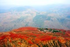 красный цвет земли Стоковая Фотография RF