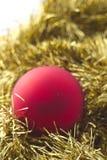 красный цвет золота украшения рождества Стоковое фото RF