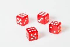 Красный цвет игры dices изолированная белизна с максимальным результатом Стоковая Фотография RF