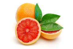 красный цвет изолированный грейпфрутом Стоковые Изображения RF
