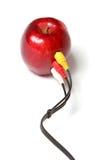 красный цвет кабельного соединения яблока Стоковое Изображение RF