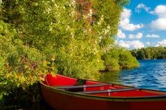 красный цвет каня Стоковое Фото