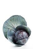 красный цвет капусты свежий Стоковая Фотография