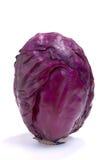 красный цвет капусты стоковая фотография rf