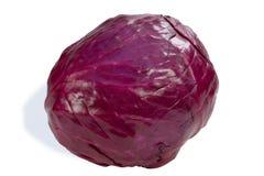 красный цвет капусты Стоковое Изображение