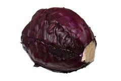 красный цвет капусты Стоковая Фотография