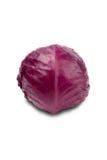 красный цвет капусты Стоковое фото RF