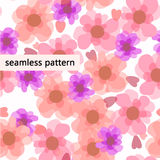 красный цвет картины цветков Стоковые Фотографии RF