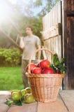 красный цвет корзины яблок Стоковые Изображения RF