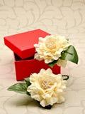 красный цвет коробки открытый Стоковые Фото