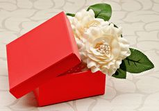 красный цвет коробки Стоковое Изображение