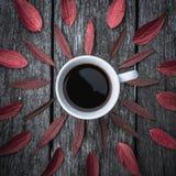 Красный цвет кофе выходит картина на белую предпосылку Плоское положение Стоковая Фотография RF