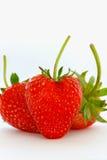 Красный цвет клубники плодоовощ. Стоковое Фото