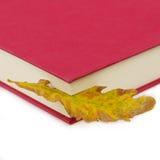 красный цвет листьев bookmark книги Стоковые Изображения