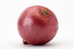 красный цвет лука Стоковая Фотография