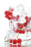 красный цвет льда питья смородины свежий Стоковые Фото