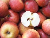 красный цвет макроса яблок Стоковое Изображение RF