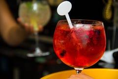 Красный цвет напитка тонического джина холодный Стоковые Изображения RF