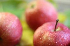 Красный цвет нескольких яблок зрелый с водой или дождем падает конец-вверх на коричневом цвете деревянного стола Стоковое фото RF
