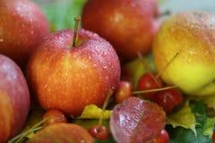 Красный цвет нескольких яблок зрелый с водой или дождем падает конец-вверх на коричневом цвете деревянного стола Стоковые Изображения