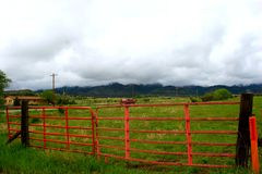 Красный цвет обнести поле Стоковое Изображение RF