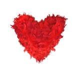 Красный цвет оперяется форма сердца Стоковые Изображения