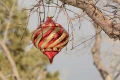 красный цвет орнамента золота рождества Стоковые Фото