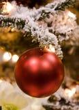 красный цвет орнамента рождества шарика Стоковые Фото