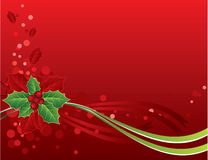 красный цвет падуба рождества карточки ягод Стоковая Фотография