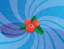 красный цвет падуба Стоковые Фотографии RF