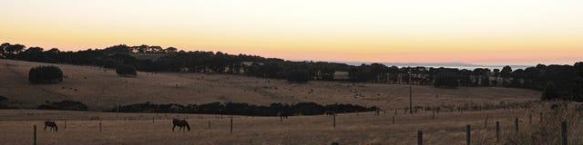 красный цвет панорамы холма Стоковые Фотографии RF