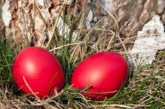 красный цвет пасхального яйца Стоковое Изображение RF