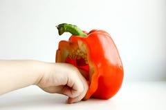 Красный цвет перца болгарский Половина стоит Стоковая Фотография RF