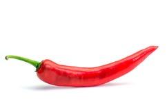 Красный цвет перца на белой предпосылке Стоковая Фотография RF