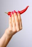 красный цвет перца Стоковые Фото