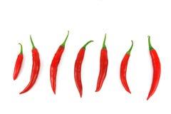 красный цвет перца chili горячий изолированный Стоковые Фото