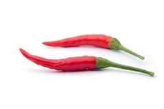 красный цвет перца chili горячий изолированный Стоковая Фотография