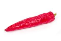 красный цвет перца chili горячий старый Стоковая Фотография RF