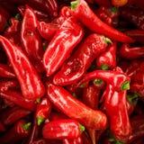красный цвет перца chili предпосылки много перцев красных Стоковая Фотография