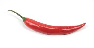 красный цвет перца chili Стоковое Изображение