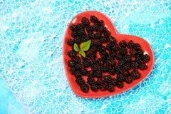 красный цвет плиты ежевики свежий Сухой завтрак в ложке Взгляд сверху Открытый космос для текста стоковые изображения rf