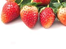 Красный цвет плодоовощ клубники Стоковое Изображение