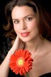 красный цвет повелительницы цветка Стоковая Фотография