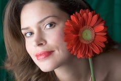 красный цвет повелительницы цветка Стоковое Изображение RF