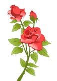 красный цвет поднял иллюстрация штока