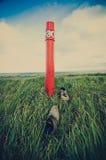 красный цвет полюса Стоковые Фотографии RF