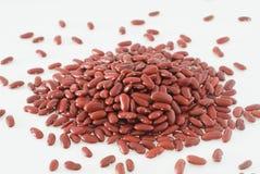 красный цвет почки фасолей Стоковая Фотография