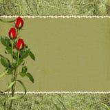 красный цвет праздника карточки поднял Стоковые Изображения