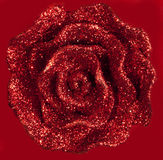 красный цвет предпосылки красивейший блестящий поднял Стоковые Фото